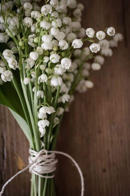May day the tradition of muguet in france a french perspective httpweddbook mightylinksfo