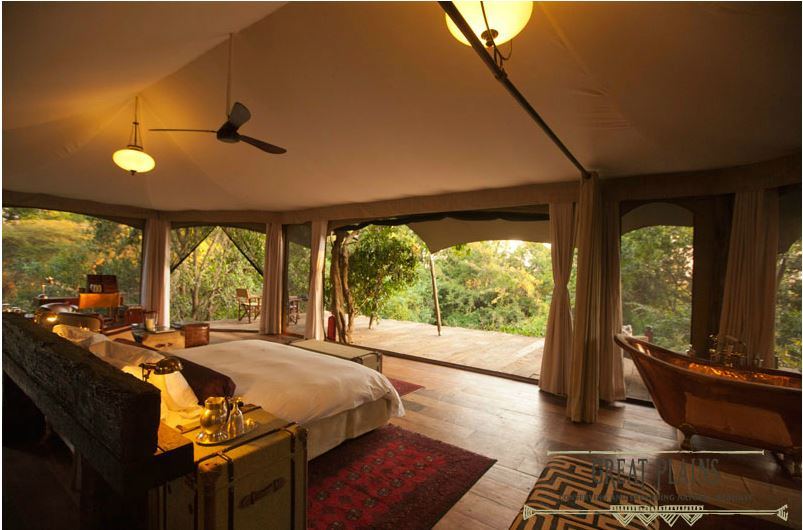 mara plains camp au Kenya