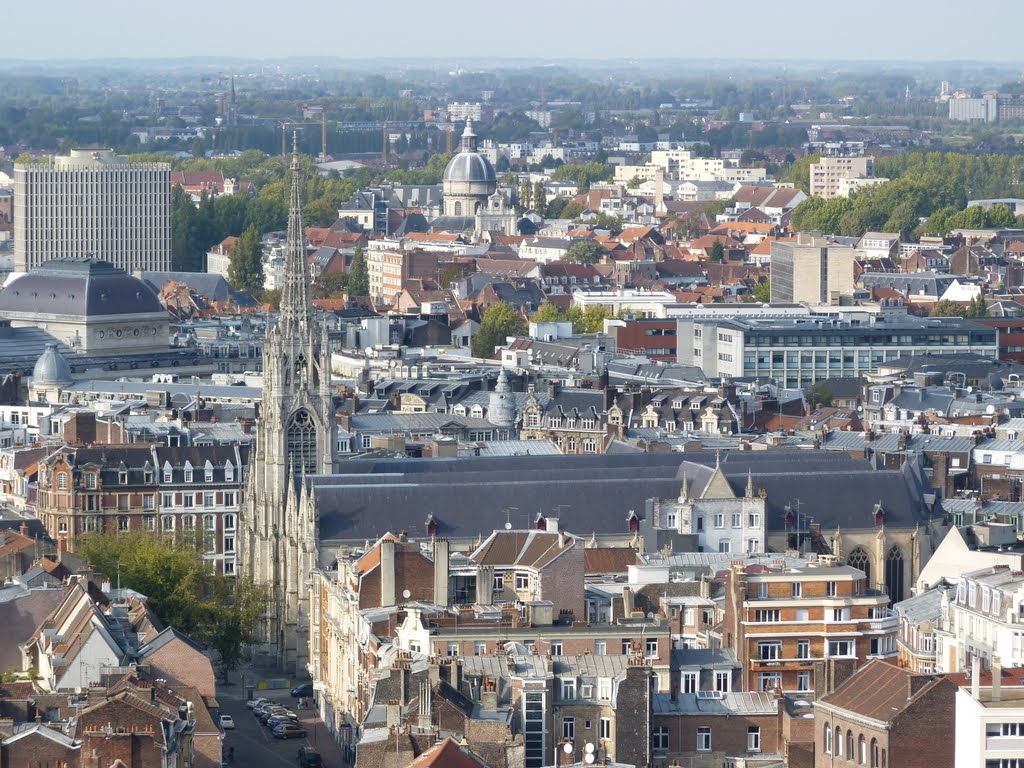 Views of Lille from the Beffroi. Credits: panoramio.com